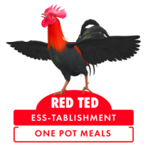 RED TED LOGO